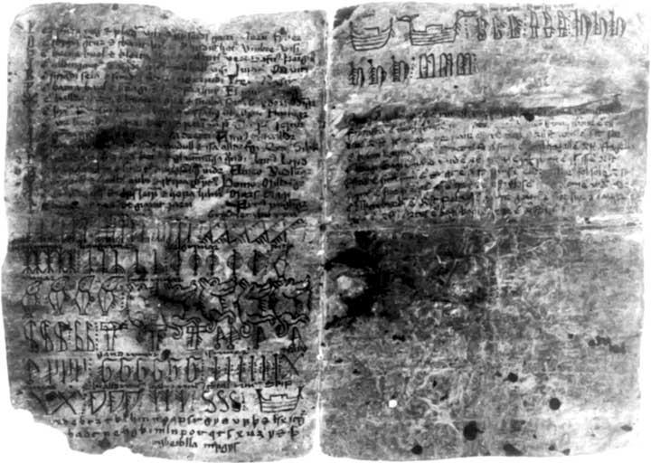 codex-arnamagnaeanus