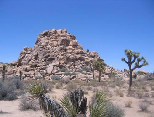 Пустыня Мохаве, Калифорния, США