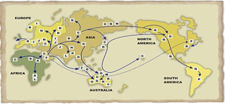 migration-genes-2